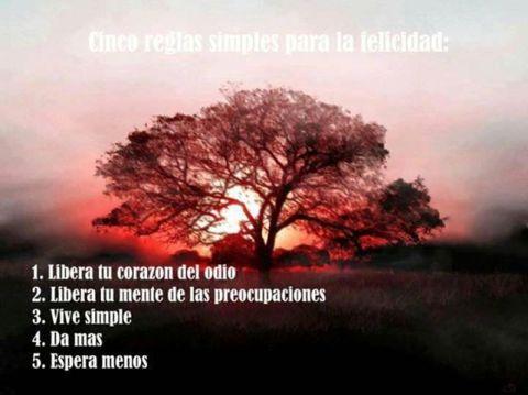 03- CINCO REGLAS